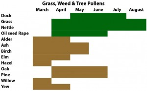 Grass, Weed & Tree Pollens Chart